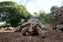 Francois Leguat Reserve, Rodrigues Island, Mauritius