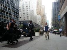 City University of New York new-york-city USA