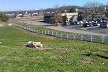 NASCAR SpeedPark Smoky Mountains, Sevierville, United States