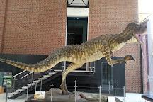 Western Australian Museum - Perth, Perth, Australia