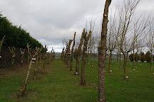 Ringfinnan Garden of Remembrance, Kinsale, Ireland