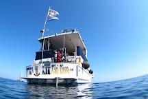 Tiki Dive, Cavalaire-Sur-Mer, France
