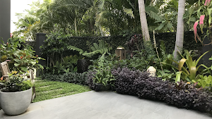 Transforming Gardens Gold Coast Landscape