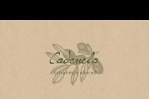 Cadenela Organic Extra Virgin Olive Oil, Vodnjan, Croatia