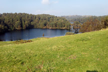 Tarn Hows, Coniston, United Kingdom
