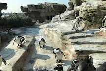 Zoo am Meer, Bremerhaven, Germany