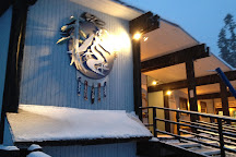 49° North Mountain Resort, Chewelah, United States