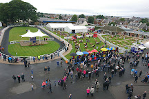 The Races at Ayr Racecourse, Ayr, United Kingdom