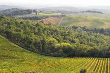Tasting Italy Tours and Weddings, Florence, Italy