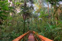 Cinco Ceibas Rainforest Reserve and Adventure Park, Sarapiqui, Costa Rica
