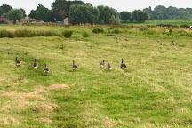 Middelpolder, Amstelveen, The Netherlands