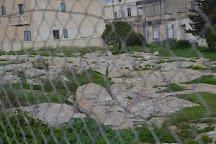Cart Ruts, Naxxar, Malta