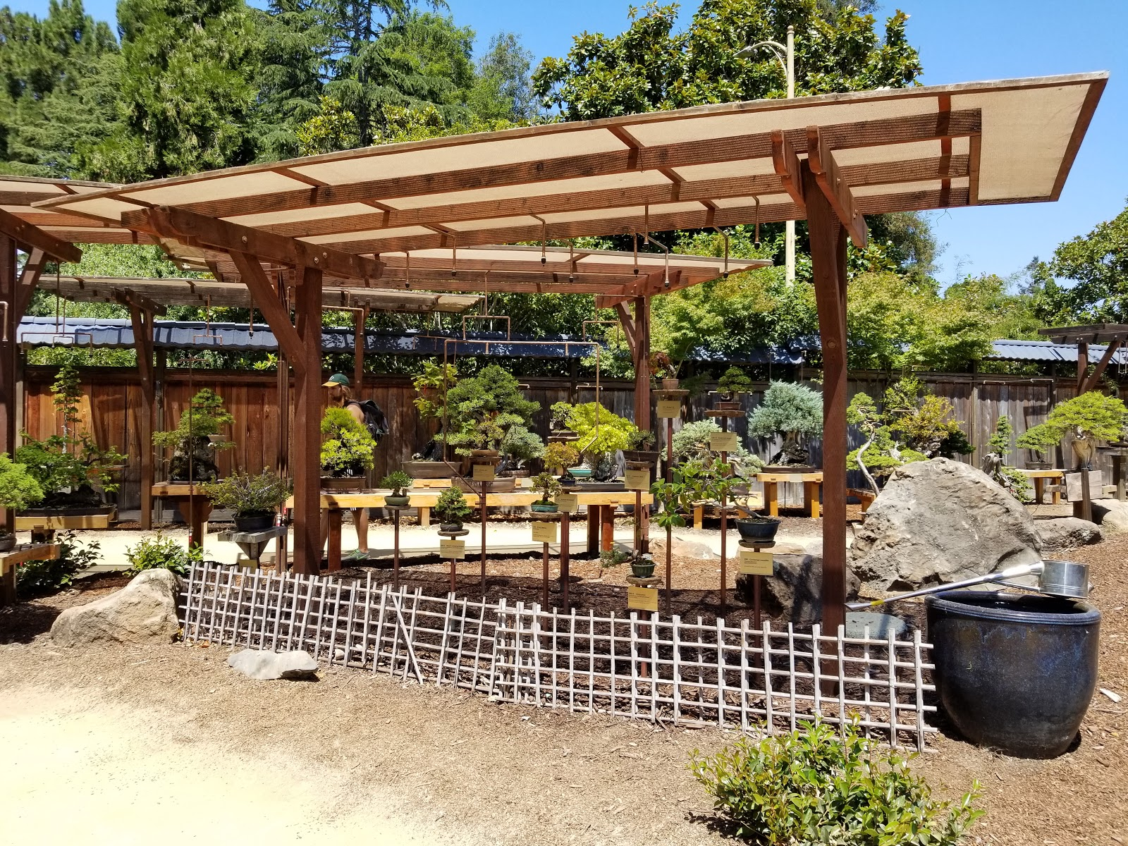 Visit Gsbf Bonsai Garden At Lake Merritt On Your Trip To Oakland