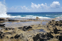 Playa Sardinera, Hatillo, Puerto Rico