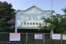 Wama Kaihin Park, Usa, Japan