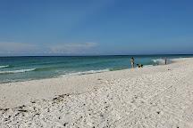 Dog Park West, Pensacola Beach, United States