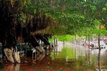 Tam Bac Lake, Hai Phong, Vietnam