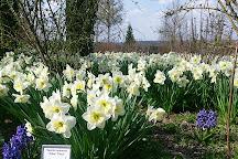 Oberdieck Garten, Freising, Germany
