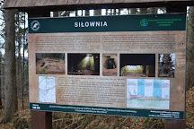 Underground Town Osowka, Gluszyca, Poland