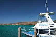 Ningaloo Marine Interactions, Coral Bay, Australia