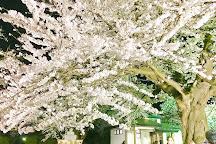 Mizusawa Park, Oshu, Japan