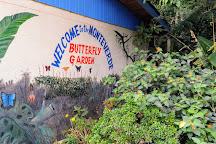 Monteverde Butterfly Garden (Jardin de Mariposas), Monteverde, Costa Rica
