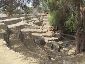 Expediciones Aventura Nazca 6