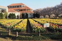 Fukaya Green Kingdom, Fukaya, Japan
