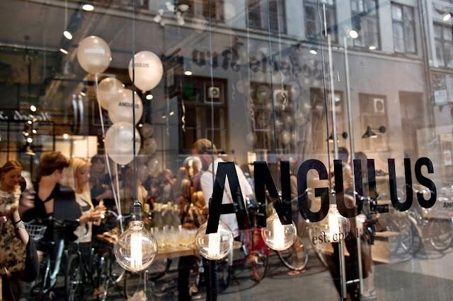 ANGULUS Concept Store