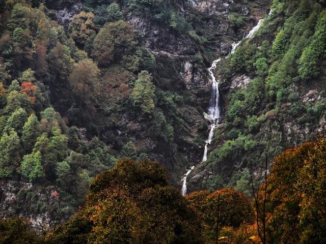 Zones protégées de Lagodekhi