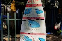 Agua Tibia Surf School, Nosara, Costa Rica