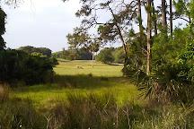 Jekyll Island Golf Club, Jekyll Island, United States