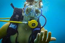 Mark Scott's Diving Vietnam, Nha Trang, Vietnam