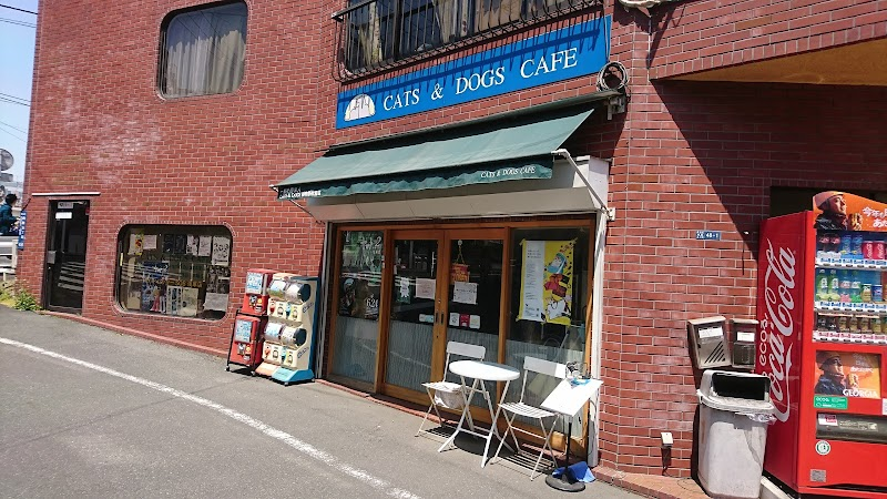 cats&dogs cafe