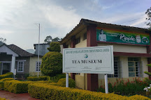 Tea Museum, Munnar, India