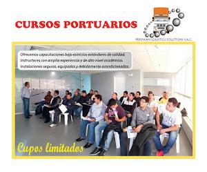 Peruvian Logistics Solutions S.A.C. 0