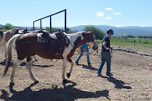 KB Horses, Heber City, United States