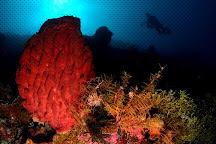 Oceania Wakatobi, Wakatobi, Indonesia