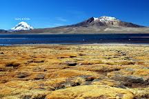 Parque Nacional Lauca, Arica, Chile