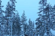 Saariselka Reindeer Farm, Saariselka, Finland