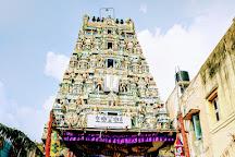 Sri Audikesava Perumal Peyalvar Temple, Chennai, India