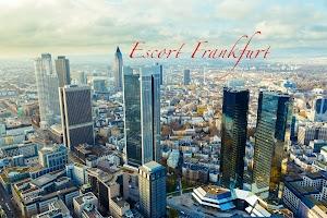 Scarabaeus Escort - Escort Frankfurt