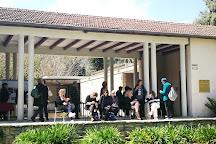 Wilfrid Israel Museum of Asian Arts and Studies, HaZore'a, Israel