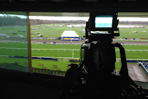 Kempton Park Racecourse, London, United Kingdom
