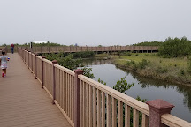 South Padre Island Birding and Nature Center, South Padre Island, United States