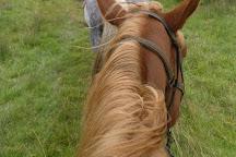 Killarney Riding Stables, Killarney, Ireland