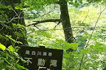 Ojiragawa Valley, Hokuto, Japan