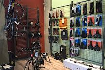 Conte's Bike Shop, Arlington, United States