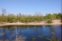 Tillman Road Wildlife Management Area, Clarence, United States