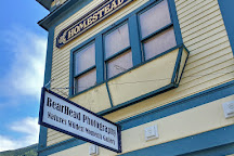 BearHead Photography Gallery, Skagway, United States